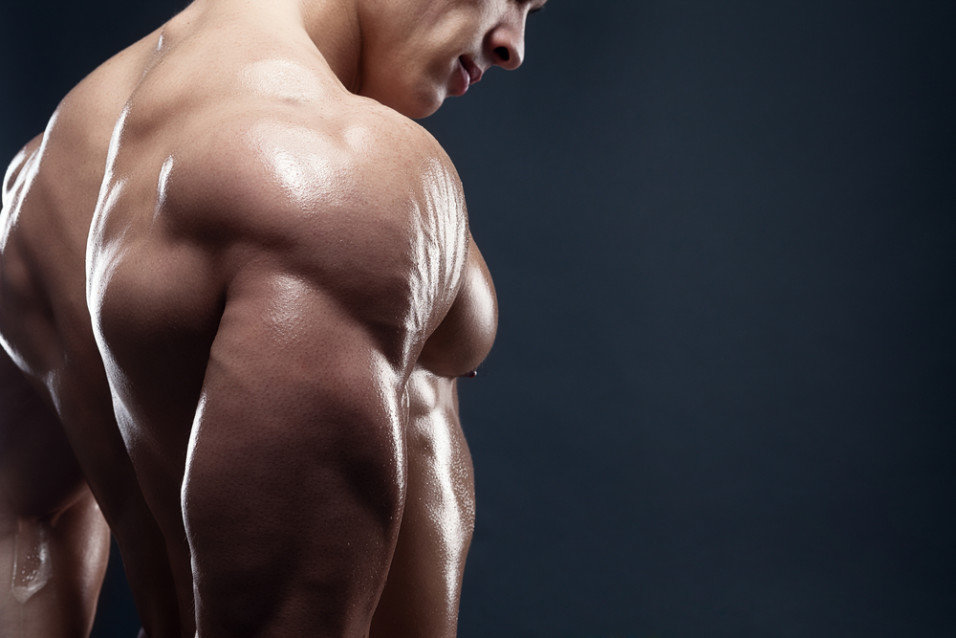 how many sets per muscle group Archives - RENEGADE WORKOUTS